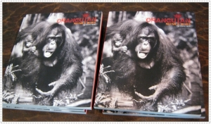 buku 'Orangutan Rhyme & Blues'